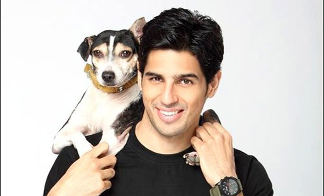 sidharth malhotra With Dog